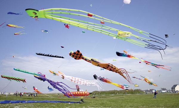 adobestock_84095377-kites-web
