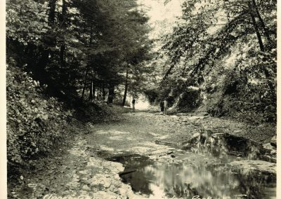 web-Chestnut-Ridge-14