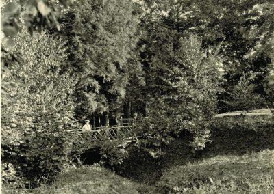 web-Chestnut-Ridge-9