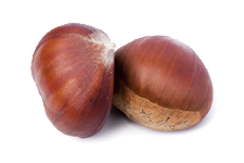 chestnuts-two-isolated